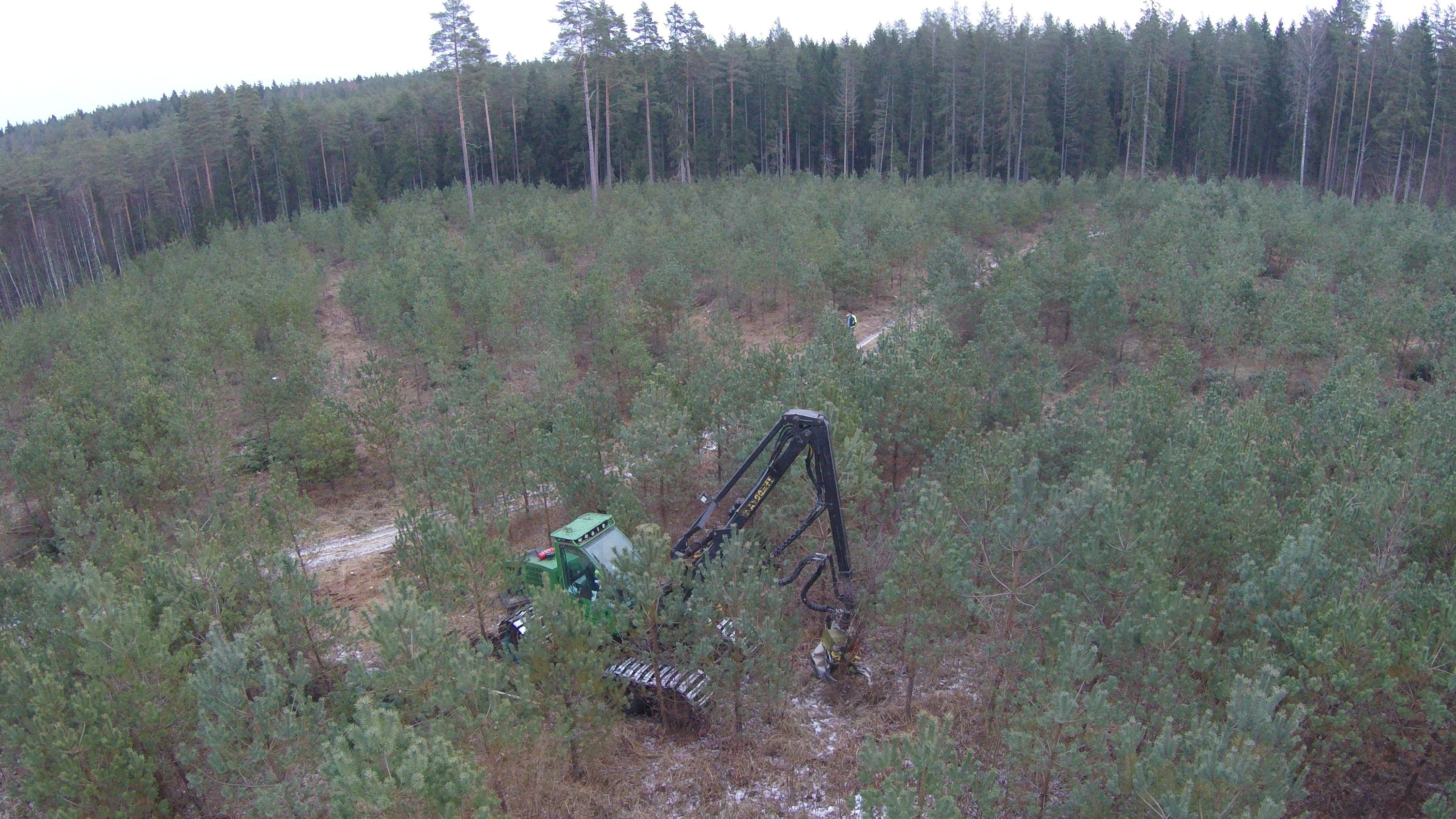Enerģētiskās koksnes ieguve - Apmācību programma uzņēmējiem, kuri ir  iesaistīti mežsaimniecības nozarē
