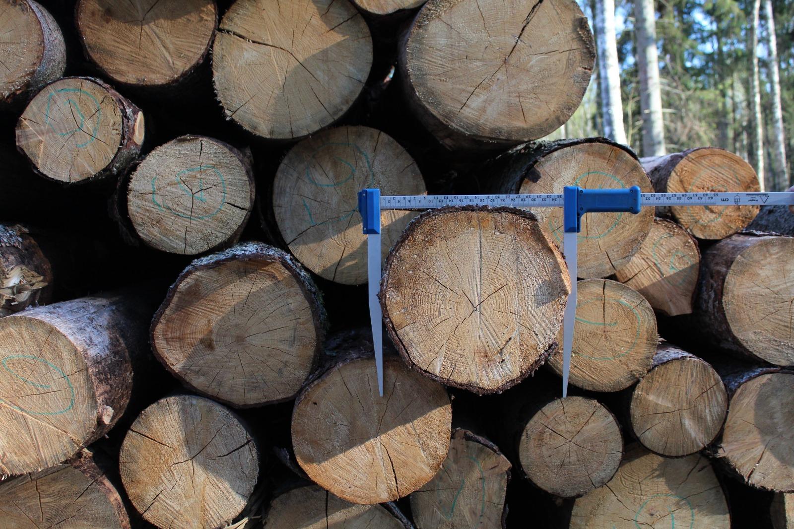 Apaļo kokmateriālu uzmērīšana un kvalitātes prasības