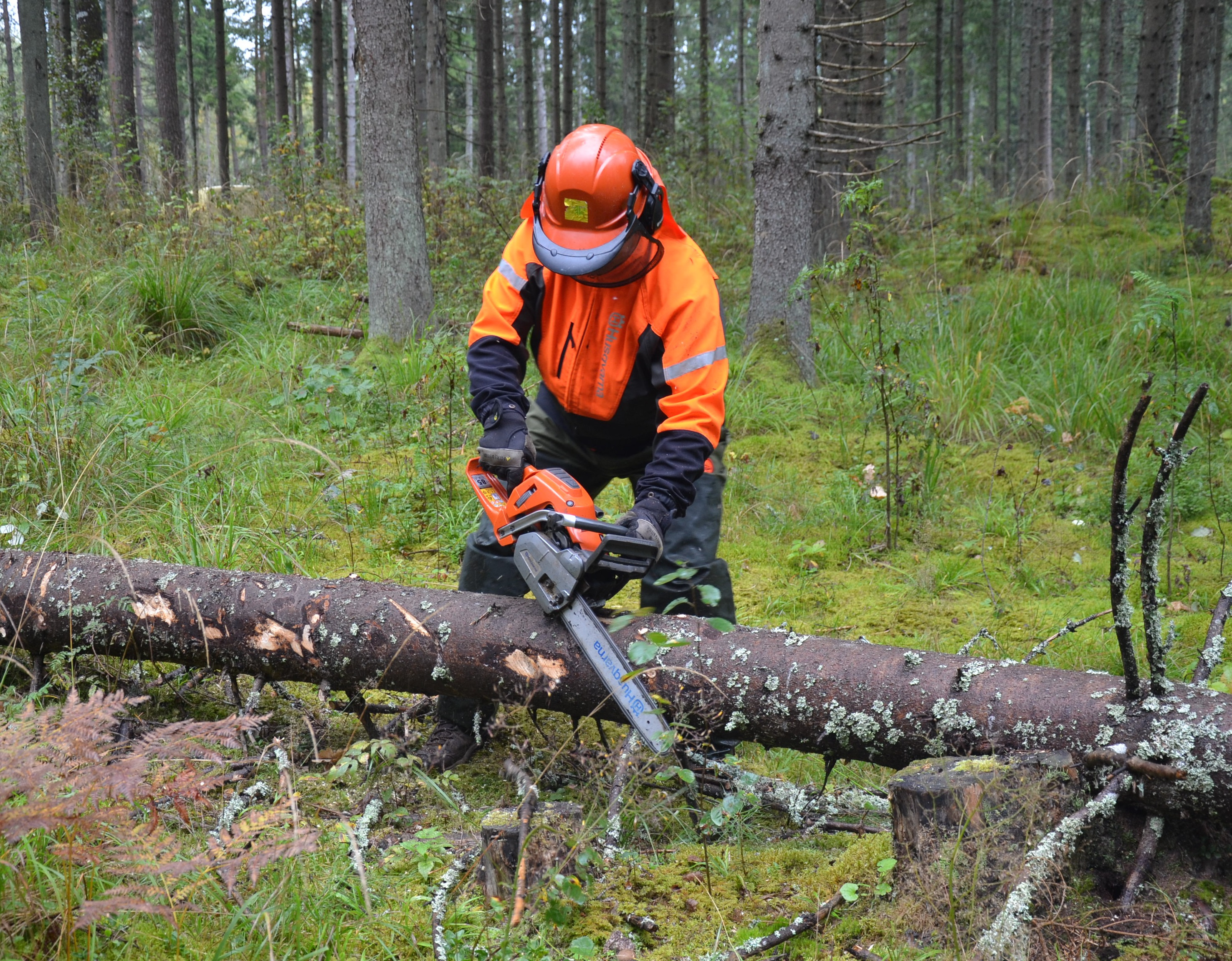 Mežizstrāde, darbs ar motorinstrumentiem