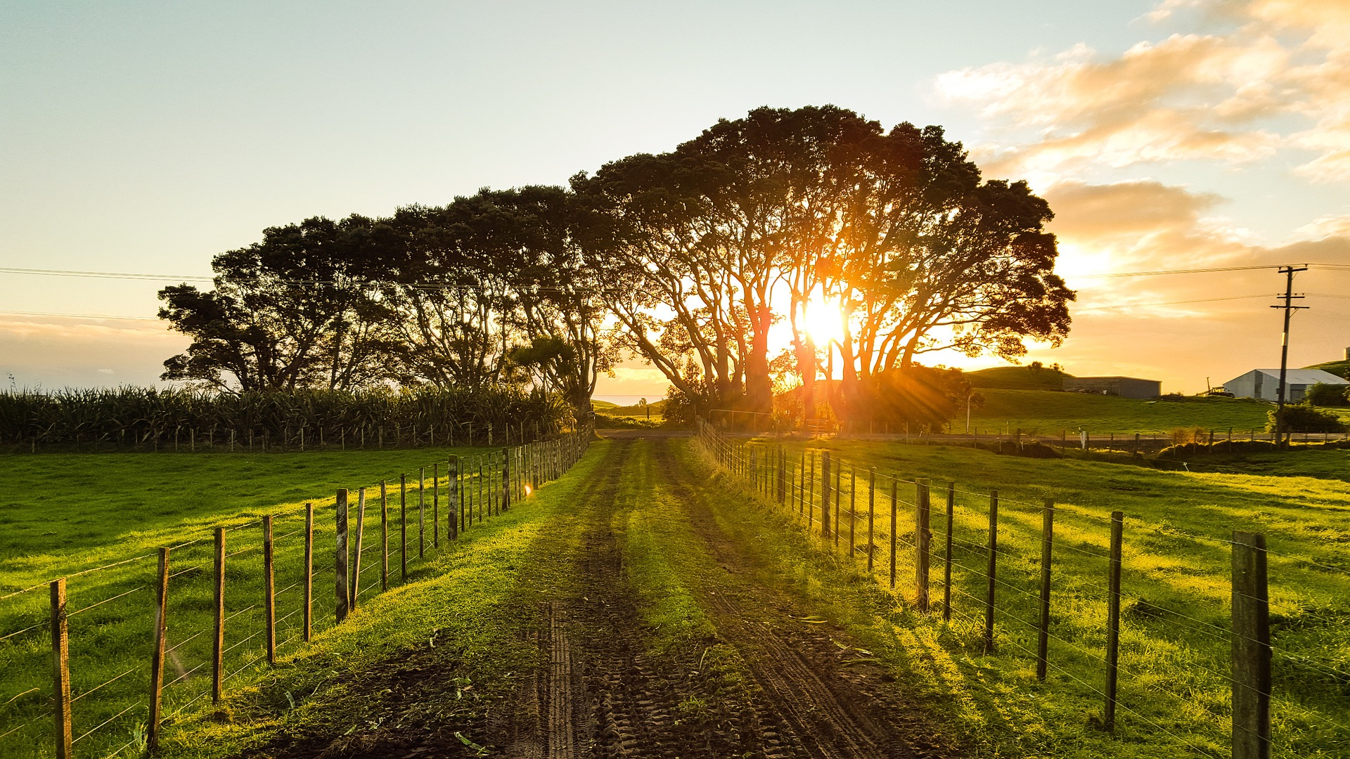 Labas Lauksaimniecības prakses īstenošana: iespējas un izaicinājumi